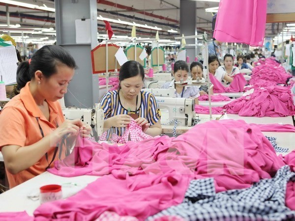 ILO ready to support Vietnam to fine-tune labour-related regulations hinh anh 1