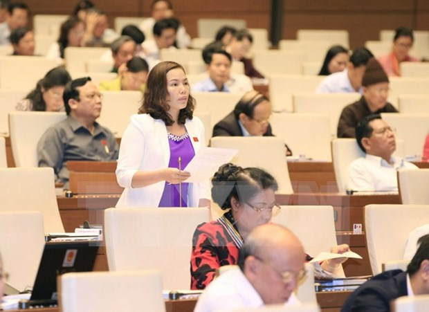 Children, int'l treaty-related laws up for debate hinh anh 1