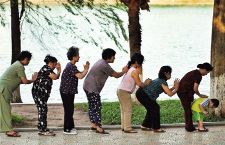 Productive capacity key to aging population hinh anh 1