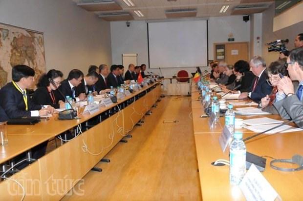 Vietnam, Belgium foster cooperative ties hinh anh 1
