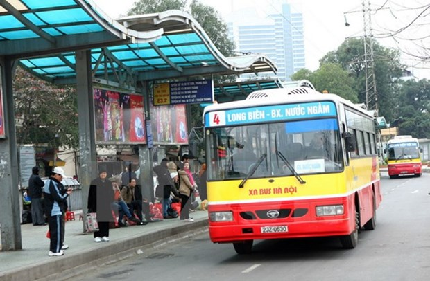 Public transport be key to urban transport hinh anh 1