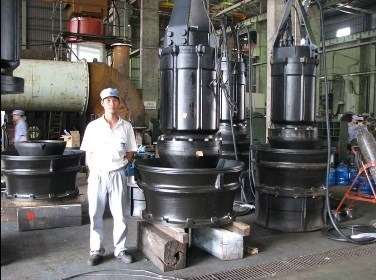 Japanese companies seek to develop projects in Hai Duong hinh anh 1
