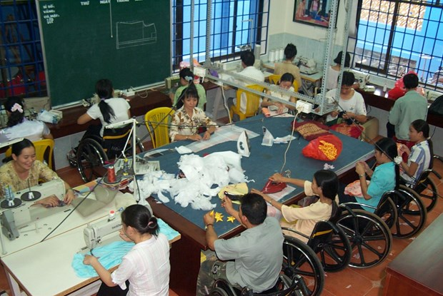 Israel ready to help Vietnam care for disabled, elderly: diplomat hinh anh 1