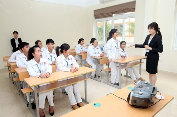Japan steps up health, labour cooperation with Vietnam hinh anh 1