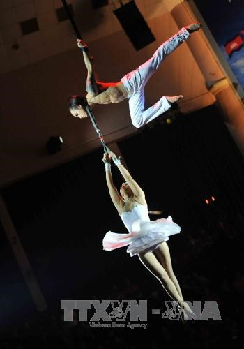 Acts of various types kick off regional young circus talent contest hinh anh 1