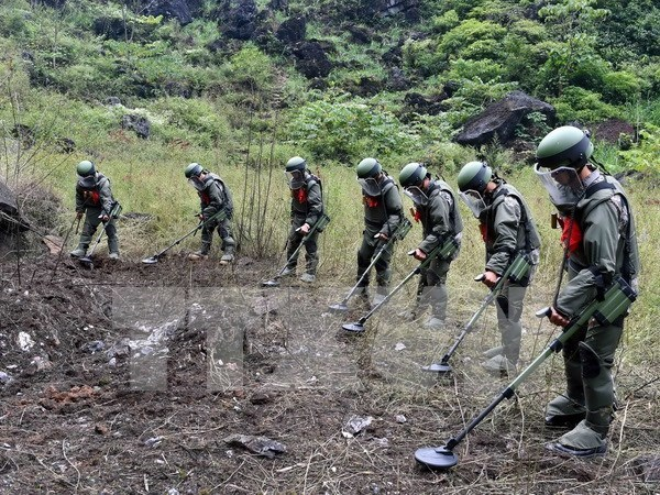 Vietnam, China join hands in mine clearance along border hinh anh 1