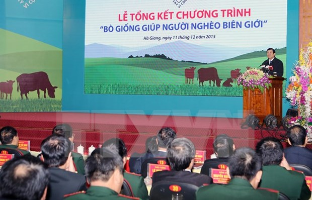 Breeding cow programme helps poor households in border localities hinh anh 1