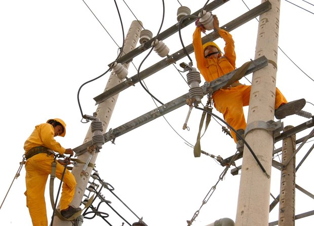 EVN HCMC supplies 88 billion kWh to national grid in five years hinh anh 1