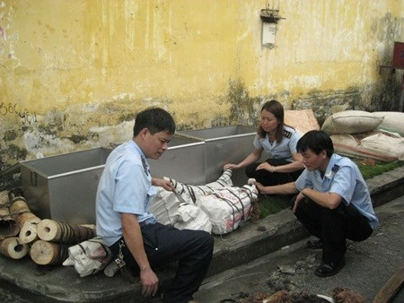 Customs officials seize elephant tusks hinh anh 1