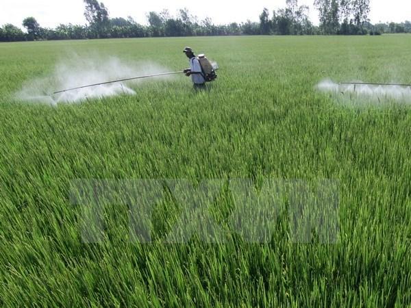 Project destroys Vietnam's pesticide stockpiles hinh anh 1