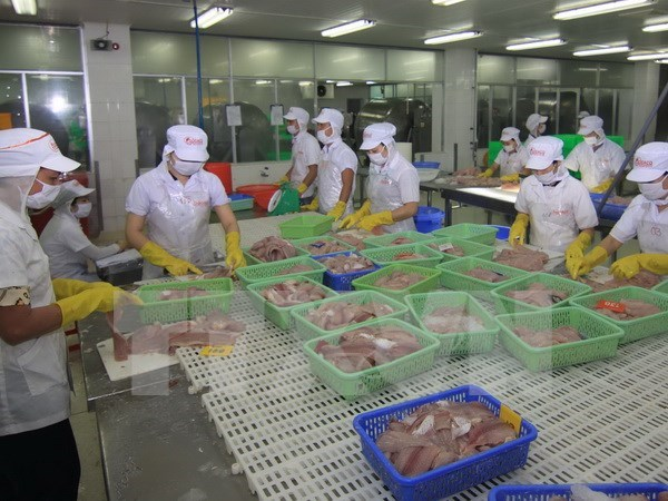 Analytical services office helps firms ensure seafood quality hinh anh 1
