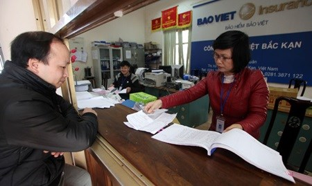 Insurance sector enjoys solid growth this year hinh anh 1
