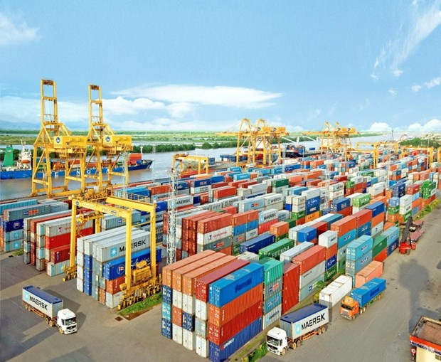 Hai Phong Port aims for 35 million tonnes of goods hinh anh 1