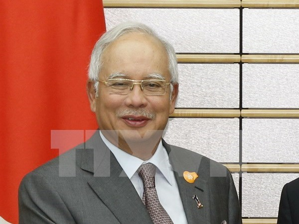 Southeast Asian leaders deliver New Year messages hinh anh 1