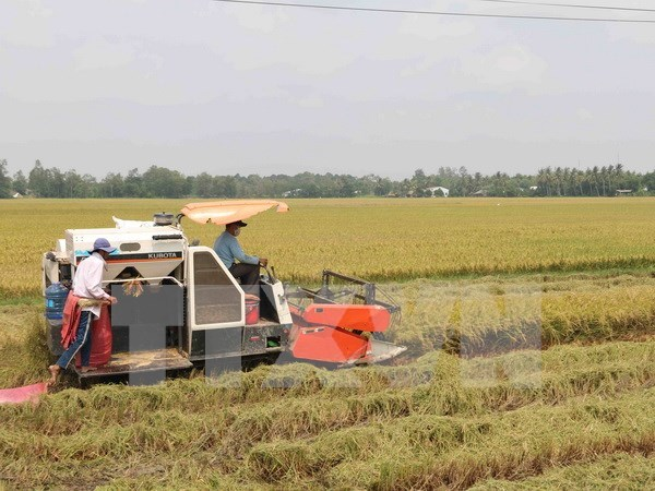Nam Dinh fosters agriculture cooperation with Japanese locality hinh anh 1