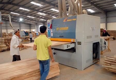 Wood exports set to climb this year hinh anh 1