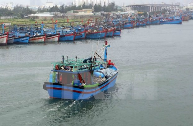 Quang Ngai fishermen equipped with ICOM devices hinh anh 1