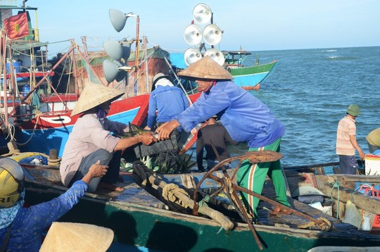 Fisheries trade union protests Chinese ships' attacks on VN's boats hinh anh 1