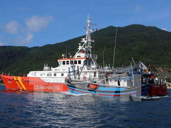 Vietnam enquiring into sinking of fishing boat: official hinh anh 1