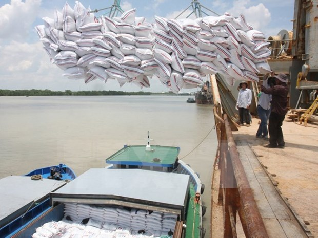 Rice exports likely unchanged in 2016 hinh anh 1