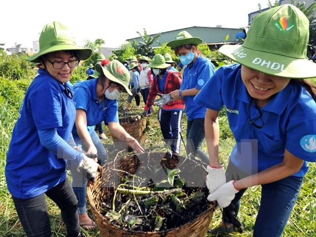 Hanoi youth to join various voluntary activities in 2016 hinh anh 1