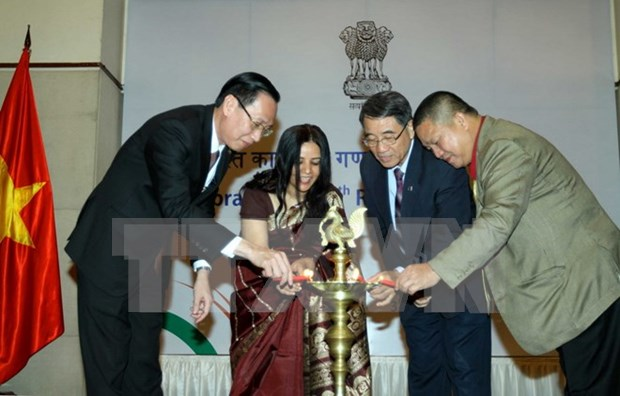 India's Republic Day marked in HCM City hinh anh 1