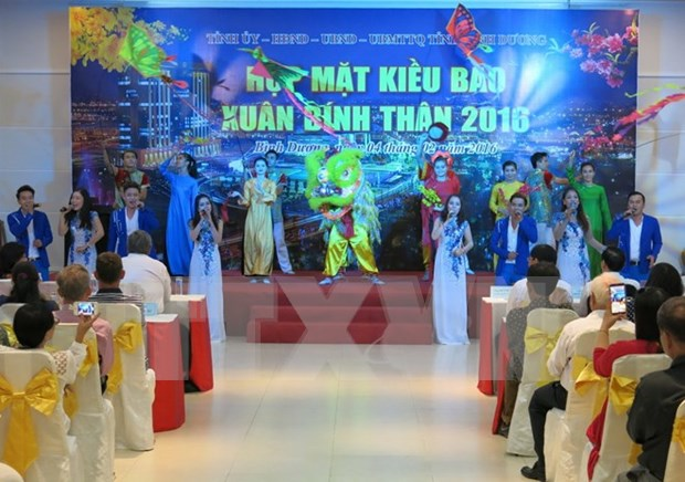 Expatriate Vietnamese contribute to home development hinh anh 1