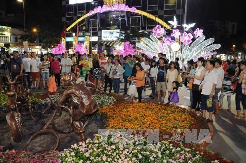 HCM City celebrates Tet with special art performances hinh anh 1