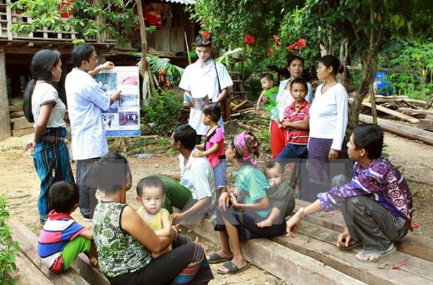 Project to intensify anti-malaria efforts through 2017 hinh anh 1