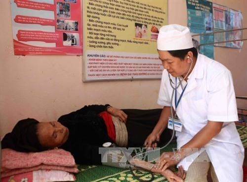 "Public healthcare goes long way after ""Doi Moi"" hinh anh 1"