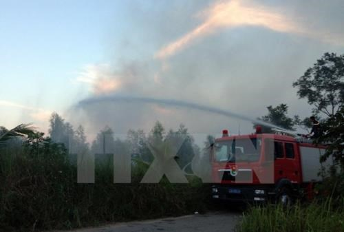 Wildfire at Hoang Lien National Park successfully controlled hinh anh 1
