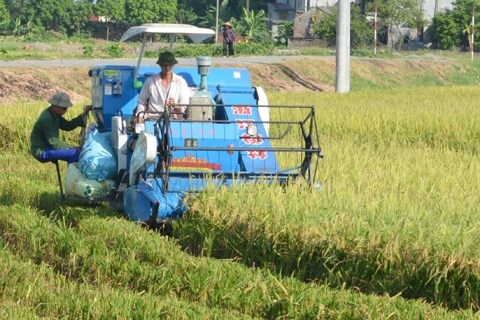Ha Nam: additional 15 communes declared new rural areas hinh anh 1