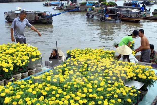 Can Tho to promote Cai Rang floating market hinh anh 1
