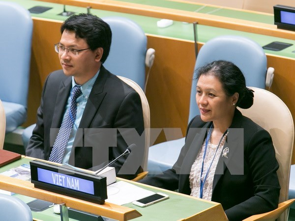 Vietnam highlights UN Charter's significance in maintaining peace hinh anh 1