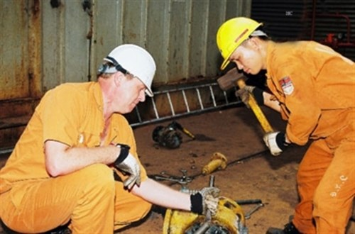 Foreign workers to get work permits within seven days hinh anh 1