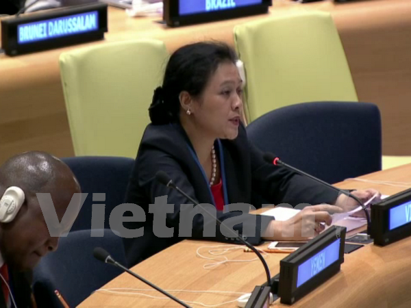 Vietnam continues to work with UNDP to realise SDGs: Ambassador hinh anh 1