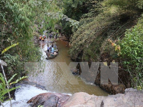 Three Britons die in accident at Da Lat tourist attraction hinh anh 1