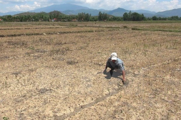 Saltwater intrusion worries Mekong Delta farmers hinh anh 1