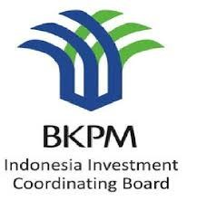 Indonesia seeks to lure Chinese investors hinh anh 1