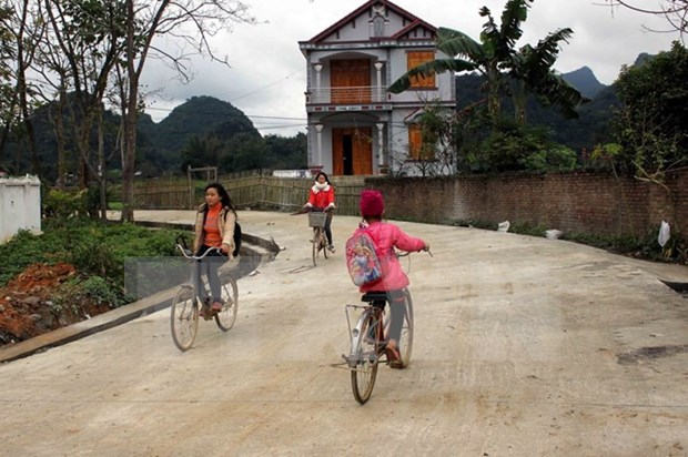 Provinces target more new-style rural communes hinh anh 1
