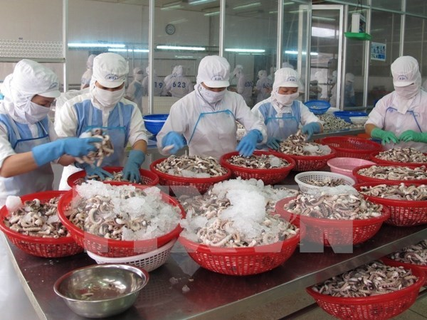 Vietnam's PMI declines in February hinh anh 1