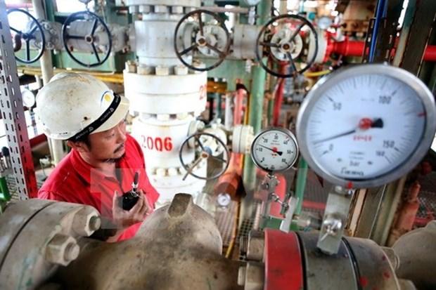 Vietsovpetro works to ensure oil exploitation plan hinh anh 1