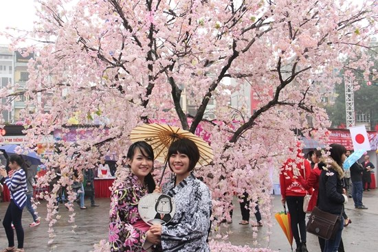 Hoa Binh Park to have 200 Japanese cherry trees hinh anh 1