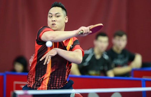 Vietnam beat Turkey at table tennis event hinh anh 1