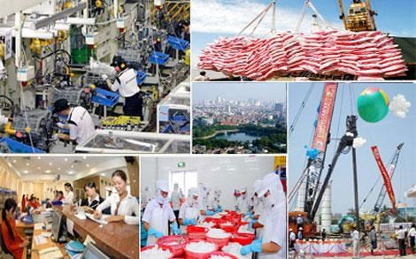 Vietnam's manufacturing sector resilient: HSBC hinh anh 1