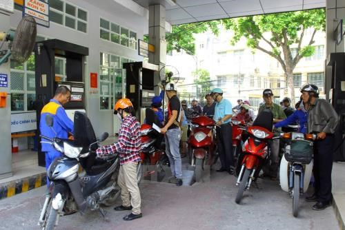 Fuel prices unchanged after nine cuts in a row hinh anh 1