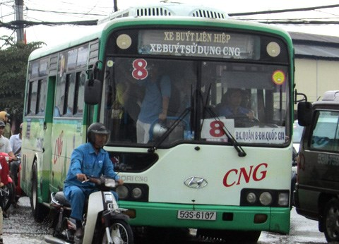 CNG-fuelled buses take to HCM City streets hinh anh 1