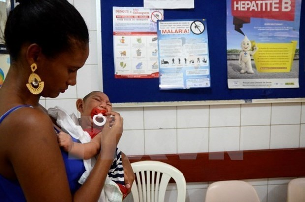 First case of Zika in Philippines hinh anh 1