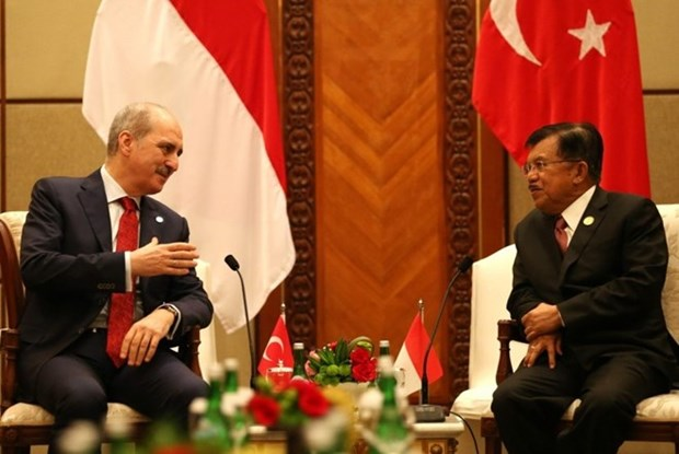Indonesia, Turkey intensify defence cooperation hinh anh 1