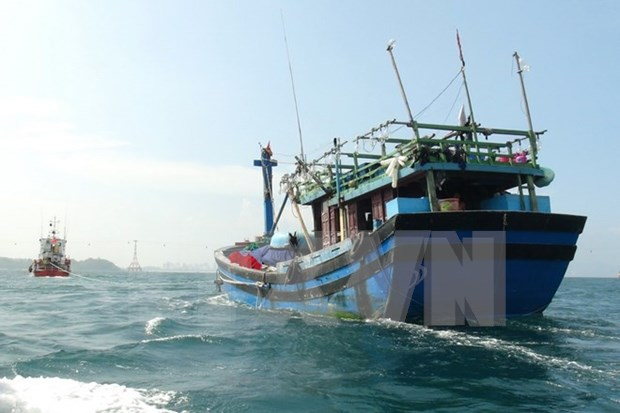 Vietnam liaises with China to rescue fishermen in distress hinh anh 1